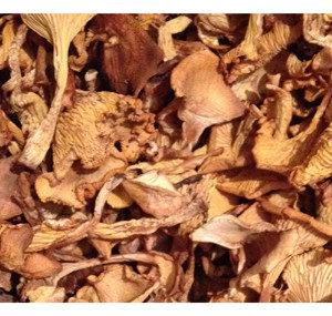 Прочие грибы