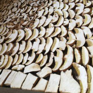 Купить белые грибы от 1 кг